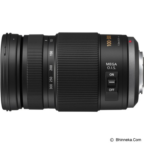 PANASONIC Lumix G Vario 100-300mm/F4.0-5.6/MEGA O.I.S [H-FS100300E] - Camera Mirrorless Lens